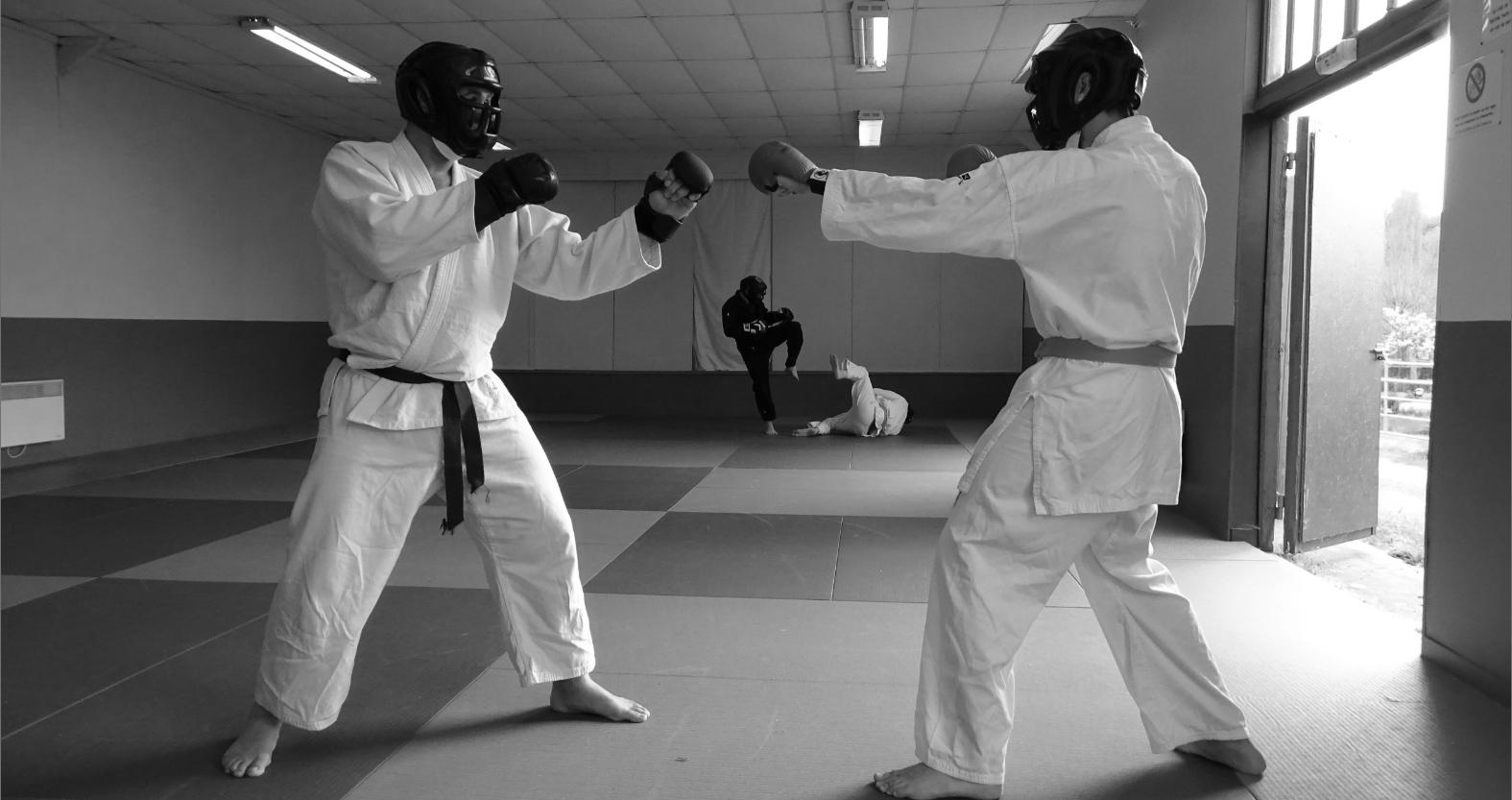 tai-jitsu-do_combat